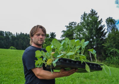 Garten Bioschüssel (11)